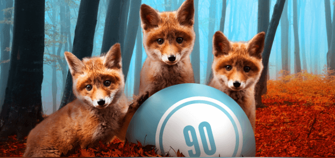 What You Can Get as a Foxy Bingo VIP – Foxy Bingo Promo Code